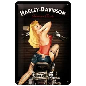 Geschenken Schild 20x30 Babe by Harley Davidson