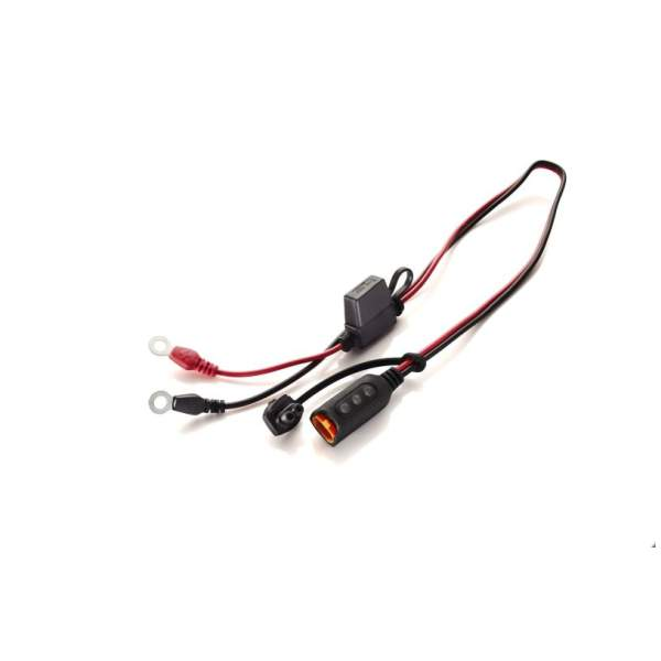 Motoraccessoires Comfort Indicator Eyelet by CTEK